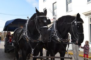 Christmas Market - Horses
